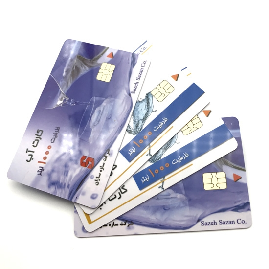ISSI4442 Contact Smart Card